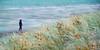 Beach Stroll (Catching Magic) Tags: newzealand waikato tiraudan raglan