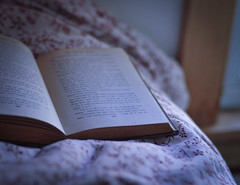 reading by the light of a cold morning (wildorange55) Tags: morning book books oldbooks coldlight yougettheidea nikond300 thestorygirl bylmmontgomery allofherannebooksarequitelovelytoo growingupincanadaeveryonewasobsessedwithher androadtoavonlea mostofyouprobablyhavenoideawhatimramblingabout