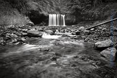 Upper Butte Falls (steveheinrichsphotography) Tags: blackandwhite oregon silverton waterfalls buttecreek scottsmills canon40d steveheinrichsphotography oregoncascadefoothills
