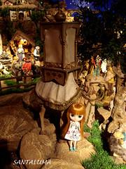 Valentine Marie vendo o camelo e decidindo se sobe ou não!!