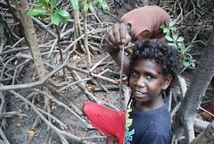 Bush tucker - searching for Mangove tree worms Milingimbi Island (John Horniblow) Tags: arnhem tourists mangrove wetlands land arnhemland bushtucker treeworms teredo yolgnu millingimbi mangroveworm