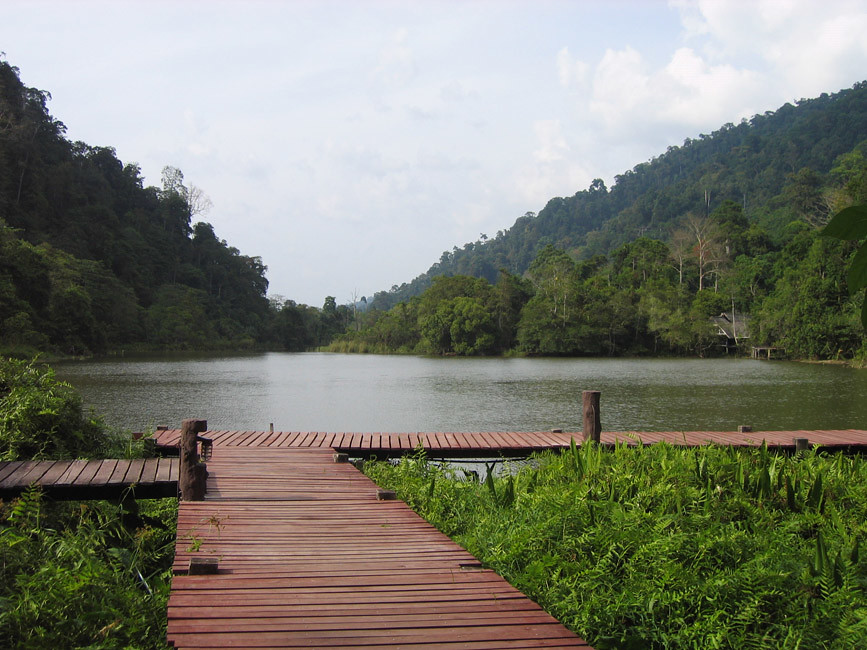 Boardwalk down to the water's edge, Thale Ban National Park