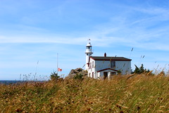 Lobster Cove Lighthouse (amybfisher) Tags: lighthouse newfoundland grosmorne rockyharbour lobstercove