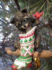 Raccoon (s.kosoris) Tags: macro tree bird pentax christmastree ornament stocking raccoon wg1 skosoris pentaxoptiowg1