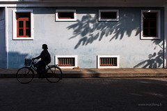 Silhouette, Pondicherry (Marji Lang) Tags: street travel windows light people woman india black bicycle silhouette wall composition contrast french grey shadows geometry lumire candid indian streetphotography ombre figure contraste shadowplay outline bicyclette tamil lightandshadow velo tamilnadu vlo treeshadow pondicherry rectangles streetshot pondy tamoul pondi travelphotography republicofindia pondichry frenchcolony ef247028l indiansubcontinent womansilhouette puducherry  canoneos5dmarkii quartierfranais bicyclesilhouette frencharea  marjilang