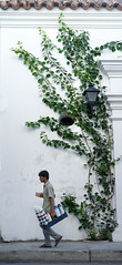 Streets of Cartagena (OneEighteen) Tags: street plant coffee colombia vine pedestrian cartagena deindias