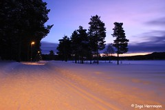 sunrise over lapland (Herrmaennchen) Tags: schnee winter light sun snow sunrise canon landscape licht sweden schweden lappland ngc sigma lapland landschaft sonne sonnenaufgang jokkmokk lichtstimmung sigma1750mm canoneos60d