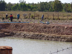 Proximity of irrigation pool. (Asia Plantation Capital) Tags: thailand north na east ban jaa nakon sakon