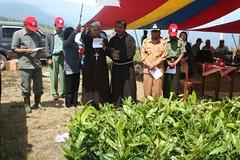IMG_6260 (Caritas PSE) Tags: 2008 kab samosir penghijauan pusuk buhit
