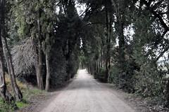 Driveway (RobW_) Tags: italy casa january tuscany siena friday toscana nord cassia 2012 virgili jan2012 13jan2012