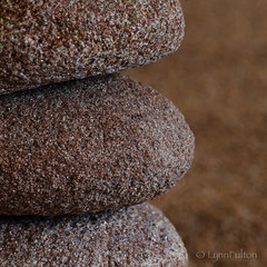 Rocky Road (Lynn McFulton) Tags: sand rocks memories pei macromondays 3652012 2010yip
