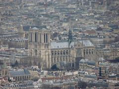 Views from Tour Montparnasse, Notre Dame (Aaron A. Aardvark) Tags: paris france tour notre dame montparnasse