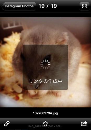 Dropbox-407