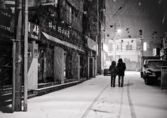 Snow trails (DMac 5D Mark II) Tags: street camera city travel winter bw favorite woman white snow storm news man black cold art tourism nature canon dark lens asian photography eos yahoo interestingness google interesting couple asia artist alone natural top south photojournalism freezing korea best fave explore most korean flurries getty jeju desolate baidu deserted journalism reviews viewed naver googleimages daum fredmiranda explored canoneos5dmarkii 5dmarkii wwwfredmirandacom gettyimagesartist douglasmacdonald instagram jejuweekly