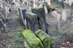 Old Jewish Cemetery Photo