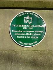 Photo of Sylvester O'Halloran green plaque