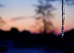 stalactite (steve lorillere) Tags: schnee sunset cloud mountain lake snow reflection berg montagne lago see photo chat sonnenuntergang dam wolke lac harley reflet prdosol neve barragem moto neige nuage nuvem paysage animaux enfant reflexion  voile plage   barrage montanha stalactite bois  coucherdesoleil 2012 autruche photographe tropfsteinhhle   reflexo   2011 estalactite     2013 lacdesaintecroix     lakeofholycross seevonholycross lagodesantacruz