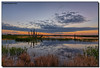 Looks Like the Sky is Clearing... (Fraggle Red) Tags: trees water grass clouds sunrise reflections dawn bravo florida earlymorning melbourne wetlands hdr viera 7exp vierawetlands canonef1635mmf28liiusm dphdr ritchgrissommemorialwetlandsatviera 5d3 brevardco 5diii adobelightroom5