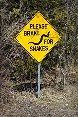 Snake Sign (Metro Tiff) Tags: road sign for snake caution brake snakes