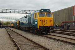 DSC06411 (Alexander Morley) Tags: st bristol 40th day open great railway philips class western marsh 40 50 hercules fearless hst d400 50007 d407 50050