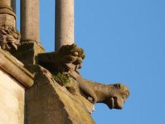 Gotik faces (picnart) Tags: sculpture art heritage cathédrale gothique gargouille patrimoine senlis gargoles
