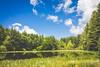 IMG_7724 (cleto.truffo) Tags: lago natura serra ivrea morena stagno morenica