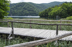 Plitvice Lakes, Croatia (Adri Pez) Tags: wood bridge naturaleza lake nature water puente lago boat wooden madera agua barca lakes croatia vegetation croacia vegetacin hrvatska plitvice