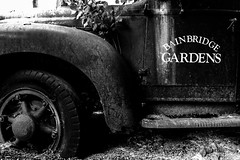 Bainbridge Gardens (PJ Resnick) Tags: auto light urban blackandwhite bw white plant black detail ford texture colors monochrome car metal blackwhite rust noir fuji angle decay steel atmosphere tire monochromatic minimal springs vehicle fujifilm minimalism shape 16mm rectangle fujinon minimalist atmospheric transporter rectangular resnick xf 4x6 xpro2 antiquepickuptruck fujinon16mmf14 pjresnick fujifilmxpro1 pjresnickgmailcom perryjresnick pjresnick xf16mm fujifilmxpro2