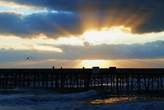 Echoes of Eternity (Zoom Lens) Tags: ocean light sea sun seagulls shells beach water beautiful seashells sunrise pier sand surf waves fishermen florida shoreline atlantic breakers lovely theoceanatlantic johnrussellakazoomlens copyrightbyjohnrussellallrightsreserved
