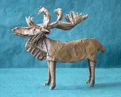 Caribou (sin cynic) Tags: cold paper reindeer origami foil arctic antlers polar caribou ungulate papercraft subarctic papersculpture rangifertarandus rangifer tissuefoil