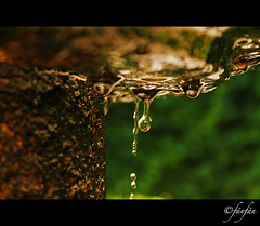 FUENTE #2 (Fänfän) Tags: españa water fountain drops spain agua eau fuente gotas salamanca espagne fontaine gouttes castillayleón fänfän huertodecalixtoymelibea ltytrx5