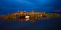 Early morning in Glyaz (Nejdet Duzen) Tags: trip morning travel lake turkey boat bush trkiye sabah sandal bursa gl turkei seyahat uluabatlake sazlk glyaz uluabatgl saariysqualitypictures mygearandme