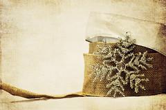 burlap ribbon (life n reflection) Tags: ribbon burlap christmasholidaycountrytexture