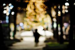 Christmas is Coming to Town (A. Aleksandravičius) Tags: christmas winter nikon holidays dof bokeh f14 85mm mc if 85 ae lithuania kaunas umc d90 samyang nikond90 samyang85mmf14 samyang85 samyangae85mmf14ifmc