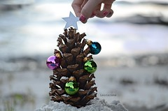 the finishing touch (Laurarama) Tags: christmas new family friends tree beach nature animal festive star lowlight sand nikon hand symbol handmade year fingers ornaments pinecone whimsical artsandcrafts odc d7000 nikkor55mmf28aismicro heritage2011