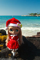 Christmas Day at the ocean