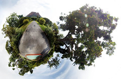 Day360 - Planet Townsville Botanics (acidrayner) Tags: panorama castle gardens rainforest little hill australia 360 queens projection queensland planet botanic 365 townsville porject365 sterographic