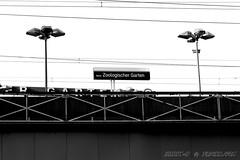 Bahnhof Zoo (harry-r _ ha22y-2) Tags: berlin schwarzweiss 2011