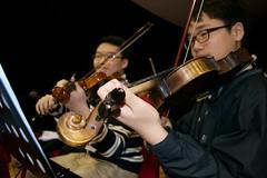 Orchestral Violins