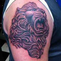 Lion I did today.  #scottwhite #visualvortex #tattoo #lion