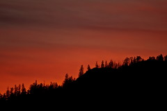 Sunset Silhouette 15 (LongInt57) Tags: pink trees sunset sky orange cloud mountain black mountains tree silhouette clouds forest landscape glow scenic silhouettes sunsets glowing forests