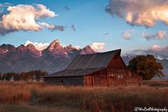 _MG_9603 (WesDotPhotography) Tags: vacation sunrise barns wyoming grandtetons nationalparks grandteton falltime mormonrow