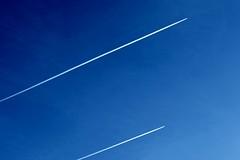 the race (Marsala Florio) Tags: blue canon blu 1001nights obliquemind obliquamente flickrstruereflection1 sx40hs canonpowershotsx40hs