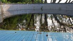 Lost Hotel 04 (stefans_box) Tags: old blue oktober tree abandoned water pool tile thailand lost hotel dangerous asia asien wasser closed ruin ruine morbid architektur retired bauwerk destroyed khaolak khao lak andaman 2011 ruhend stefansbox