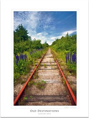 Old Destinations (C's photo-artistry (A Little of This &That)) Tags: old morning flowers trees sky clouds train landscape tracks abandon destination wildflowers bushes endless railwaytracks lupines leadinlines canon50d cans2