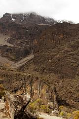 Kilimajaro - Machame Route day 3 Barranco Camp (inaina10) Tags: africa stella plants kilimanjaro fauna trekking tanzania tents flora rocks hiking mount glaciers uhuru camps porters machameroute