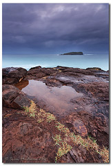 """One of the great things about books is sometimes there are some fantastic pictures."" (danishpm) Tags: ocean clouds sunrise canon rocks wideangle nsw 1020mm manfrotto sigmalens cookisland northernnsw eos450d fingalheads 450d tweedshire sorenmartensen tweedarea hitechgradfilters 09ndreversegrad"