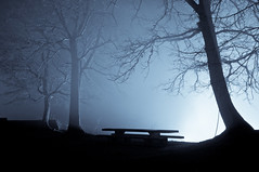 bench (Michad90) Tags: blue trees light mist fog night bench nikon d90 nagold hohennagold schlosberg