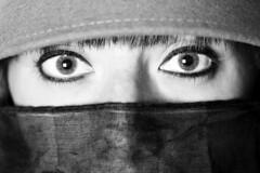 Untitled (MattSnap) Tags: portrait blackandwhite beauty look closeup photography eyes eyecontact veil flash depthoffield portraiture contact striking softbox shallowdepthoffield offcameraflash boldlook