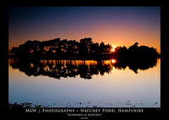 """Sundown at Hatchet"" (BlackHawk1995) Tags: new sunset forest landscape pond hatchet coth greatphotographers supershot diamondclassphotographer flickrdiamond dragondaggerphoto coth5 thephoto~heart~art~group sunrays5 magicmomentsinyourlifelevel1"